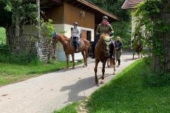 Ausritt Ferienhof Bayerischer Wald