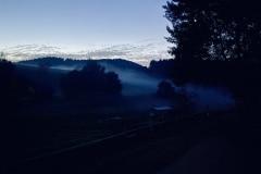 Nebelwellen Koppeln Ferienhof