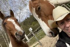Pferde Sternchen, Nahimana und Tom