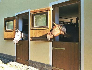 Außenboxen Pferdestall